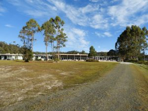 26 Lake Pedder