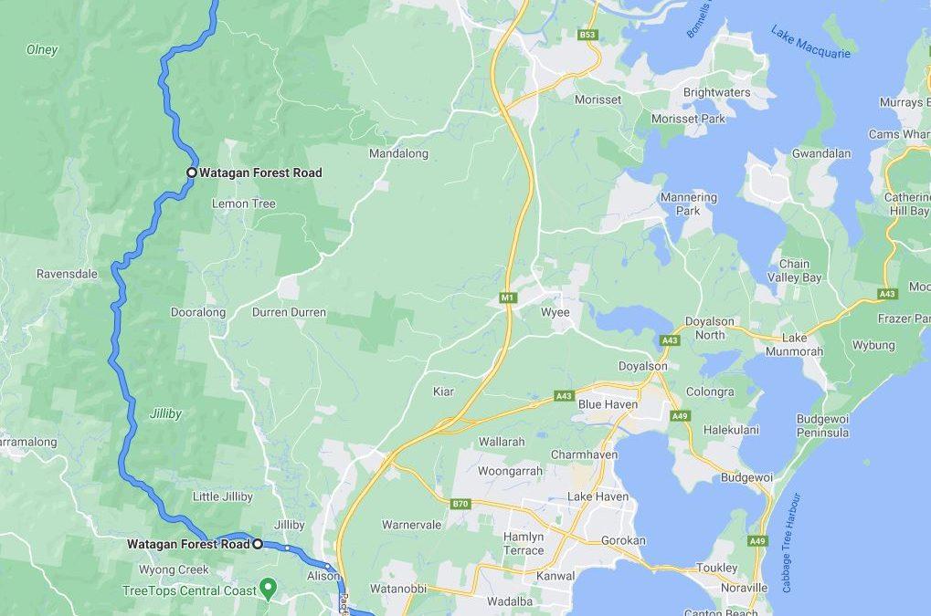 Watagans Forest Ride